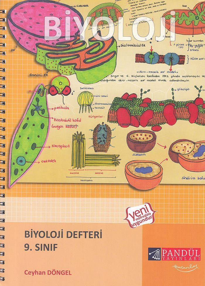 Pandül Yayınları 9. Sınıf Biyoloji Defteri
