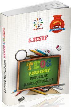 Başarı Küpü Yayınları 8. Sınıf TEOG Paragraf Soruları Nasıl Çözülür