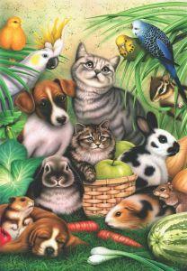 Büyülü Hayvanlar Magic Pets 260 Parça Yapboz