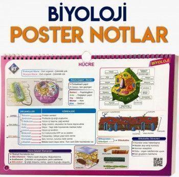 KR Akademi Yayınları TYT Biyoloji Poster Notlar