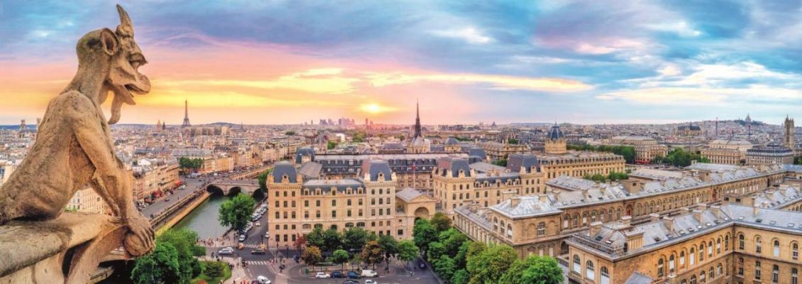 View From The Cathedral Of Notre-Dame De Paris